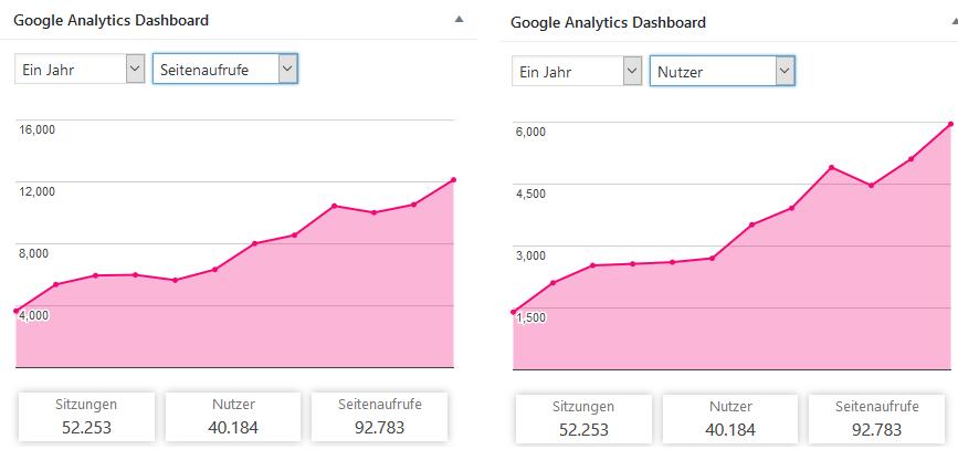 Seitenaufrufe und Nutzer in 1 Jahr